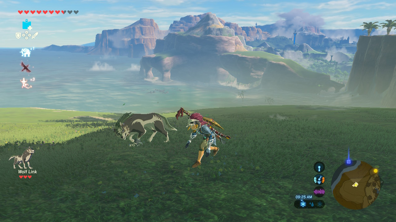 That wolf is the Wolf Link from the Amiibo, which poses problems of identity not that dissimilar to those associated with the Trinity. To wit: if God and Jesus play catch, is Jesus playing alone?